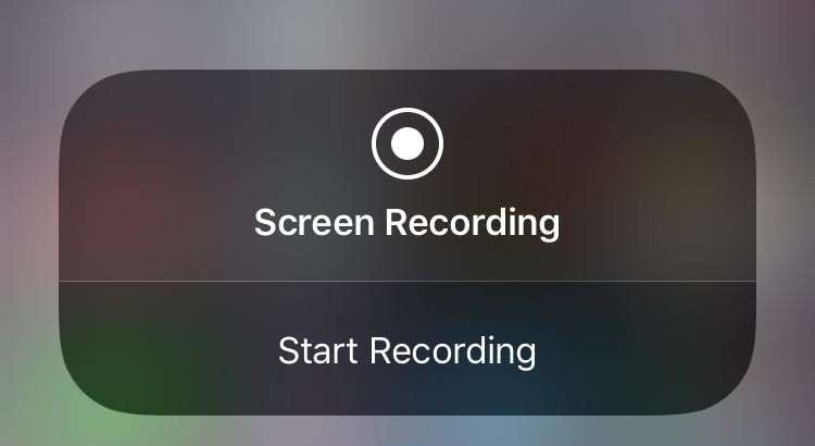 Security Issues with Screen Recorders