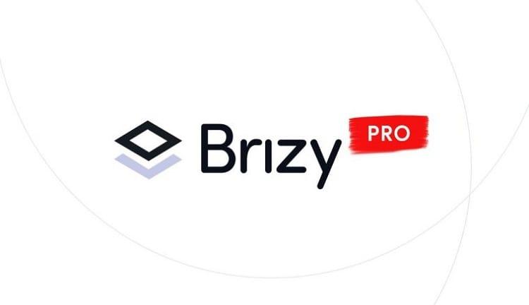 brizy pro wordpress theme